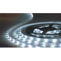 LED Lentes